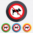 Dog sign icon. No Pets symbol. — Stock Photo