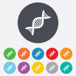 DNA sign icon. Deoxyribonucleic acid symbol. — Stock Photo #43202723