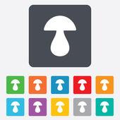 Mushroom sign icon. Boletus mushroom symbol. — Stock Vector