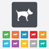 Dog sign icon. Pets symbol. — Vector de stock