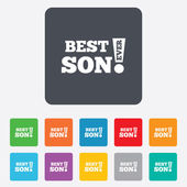 Best son ever sign icon. Award symbol. — Stock Vector