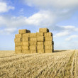 Stock Photo: Stack of straw bales in field