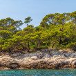 Lokrum — Stock Photo
