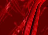 Kan damarları — Stok fotoğraf