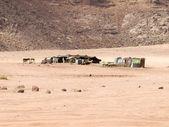 Beduin domu w wadi rum — Zdjęcie stockowe
