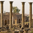 Bosra-Syria — Stock Photo #25746333