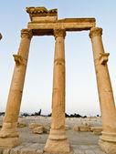Sunset in Palmyra — Stock Photo
