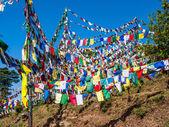 Wzgórze z flagi modlitewne, dharamsali — Zdjęcie stockowe