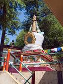 Piccolo altare, dharamsala — Foto Stock