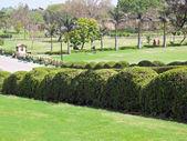 Raj Ghat park — Stock Photo