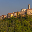 Motovun - Croatia — Stock Photo