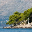 Mediterranean landscape - Cavtat, Croatia — Stock Photo #31590153
