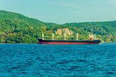 Ship transport on the Bosphorus — Stock Photo