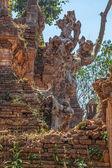 Indein, Inle Lake overgrown pagoda — Stock Photo