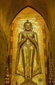 Standing Buddha Kassapa South facing — Stock Photo