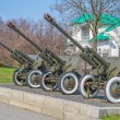 Artillery from the Second World War — Stock Photo