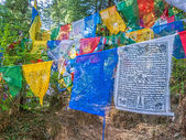 Prayer flags — Stock Photo