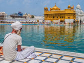 Sikh devotee at the Harmandir Sahib — Stock Photo