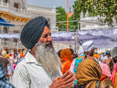 Sikh devotee at the Golden Temple — Stock Photo
