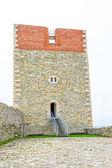 Fortress at Medvedgrad castle — Stock Photo