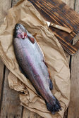 Rainbow trout (Oncorhynchus mykiss) — Stock Photo