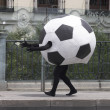 Soccer ball disguise — Foto Stock #23213060