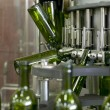 Wine bottling plant - Stockfoto