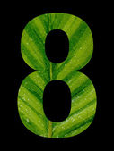 Number 8 mask with green leaf inside — Stock Photo