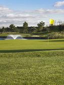 Golf green — Stock Photo