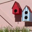 Bird houses — Foto Stock