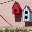 bird houses — Stock Photo