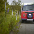 Colorful old van and plants. Iceland. Reykjavic. — Stock Photo #33395079