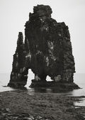 Iceland. Vatnsnes Peninsula. Hvitserkur rock monolith. — Stock Photo