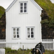 Iceland. Cemetery and traditional icelandic house. — Stock Photo