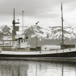 Industrial fishing boat. Iceland. Husavik harbor. — Stock Photo