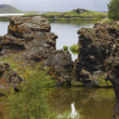 Lake and lava formations in Myvatn Iceland — Stock Photo