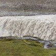Stock Photo: Field of lavand Dettifoss waterfall in Iceland
