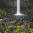 Iceland. Southeast area. Svartifoss waterfall and basaltic rocks — Stockfoto #36988531