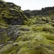 Iceland. South area. Lakagigar. Volcanic landscape. — Stock Photo #36988741