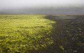 Iceland. South area. Lakagigar. Volcanic landscape. — Stockfoto