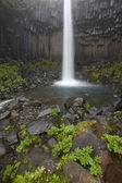 Iceland. Southeast area. Svartifoss waterfall and basaltic rocks — Stock Photo