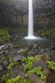 Iceland. Southeast area. Svartifoss waterfall and basaltic rocks — Stock Photo