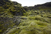 Iceland. South area. Lakagigar. Volcanic landscape. — Stock Photo