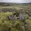 Stock Photo: Iceland. South area. Lakagigar. Volcanic landscape.