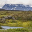 Iceland. Herdubreid Mountain. Highland region. F88 Road. — Stock Photo #40217843