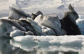Iceland. Southeast area. Jokulsarlon. Icebergs, lake and glacier — Stock Photo