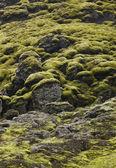 Iceland. South area. Lakagigar. Volcanic landscape. — Stock Photo