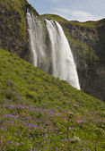 Iceland. South area. Eyjafjalajokul zone. Seljalandsfoss waterfa — Stock Photo