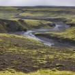 Iceland. South area. Lakagigar. Volcanic landscape. — Stock Photo #45260787