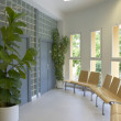 Modern building interior with plants and windows — Stock Photo